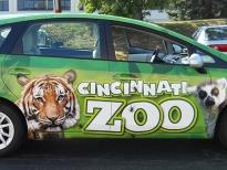 cinti_zoo